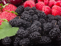 Berry Mix background Royalty Free Stock Image