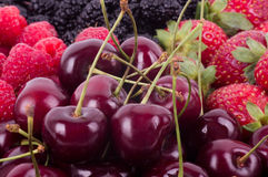 Berry Mix background Stock Photos