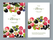 Berry mix banners. Vector mix berry banners. Design for tea, natural cosmetics, beauty store, dessert menu, organic health care products, perfume, aromatherapy Stock Images