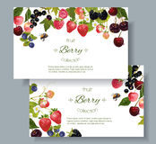 Berry mix banners. Vector mix berry banners. Design for tea, natural cosmetics, beauty store, dessert menu, organic health care products, perfume, aromatherapy Stock Photos
