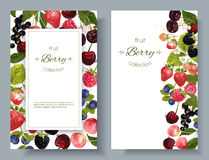 Berry mix banners Stock Photos