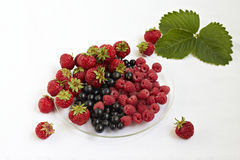 Berry mix Stock Photos