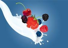 Berry mix cream splash Royalty Free Stock Photos