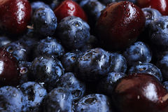 Berry mix. Mix of fresh blueberries and cherries covered with water drops Royalty Free Stock Photography