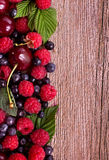 Berry mix left Royalty Free Stock Photography