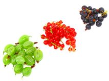 Berry mix- red and black currant. Isolated. Royalty Free Stock Photos