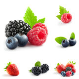 Berry mix. Berry theme  mix composed of different images Stock Images