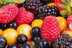 Berry Mix Stock Photos