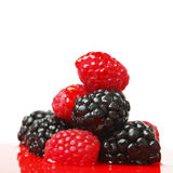 Berry mixed pile in syrup Stock Images