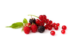 Berry Mixed Pile With Green Leaves Stock Image