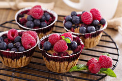 Berry muffin with oats Stock Photos