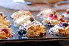 Berry muffins Stock Photos