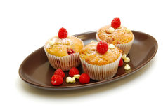 Berry muffins on plate isolated Stock Photography