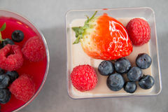 Berry panacotta in a plastic  cup Stock Photography