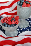 Berry Patriotic Stock Images