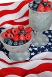 Berry Patriotic Stock Images
