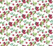 Berry pattern painting s royalty free illustration