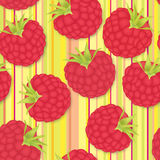 Berry pattern. Party texture Stock Photos