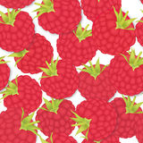 Berry pattern. Party texture Stock Photography