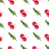 Berry pattern3 Royalty Free Stock Photography