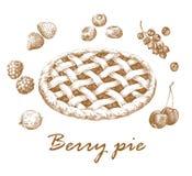 Berry Pie Arkivbilder