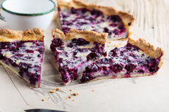 Berry pie layered with custard Royalty Free Stock Photo