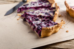 Berry pie layered with custard Royalty Free Stock Photos