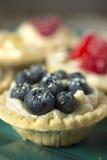 Berry pies Stock Photos