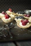 Berry pies Royalty Free Stock Photos