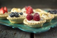 Berry pies Stock Image