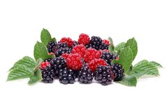 Berry pile Royalty Free Stock Images
