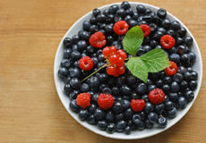 Berry plate Stock Photography