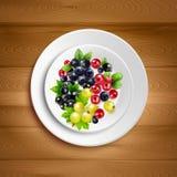 Berry Plate Realistic Vector Illustration Images libres de droits