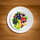Berry Plate Realistic Vector Illustration Royalty Free Stock Images