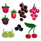 Berry platter Stock Photography