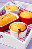 Berry puddings Royalty Free Stock Image