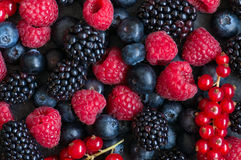 Berry raspberries red currants and blueberries on black slate bo. Ard. Gray stone background.  Top view Royalty Free Stock Photo
