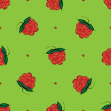 Berry raspberry seamless pattern nature green background Stock Photography