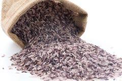 Berry Rice Lizenzfreie Stockfotos