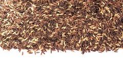 Berry rice Stock Image