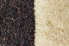 Berry rice, white rice Royalty Free Stock Image