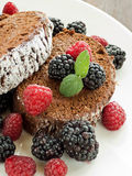 Berry roulade. Homemade roulade with blackberries, raspberries and whipped chocolate sour cream. Shallow dof Stock Images