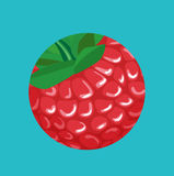 Berry in round cut shape flat design Royalty Free Stock Photography