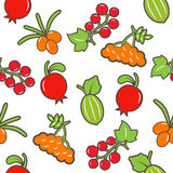 Berry seamless background. The colorful berry seamless background Royalty Free Stock Photography