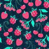 Berry seamless pattern Stock Photography