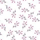 Berry seamless pattern Stock Photos