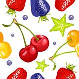 Berry seamless pattern Stock Images