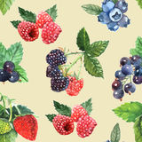 Berry Seamless Pattern Royalty Free Stock Image