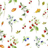 Berry seamless pattern. Wild berry and leaves.Watercolor hand drawn illustration.White background.Blueberries,cranberry,strawberries Royalty Free Stock Images
