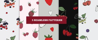 Berry seamless patterns collection. royalty free illustration